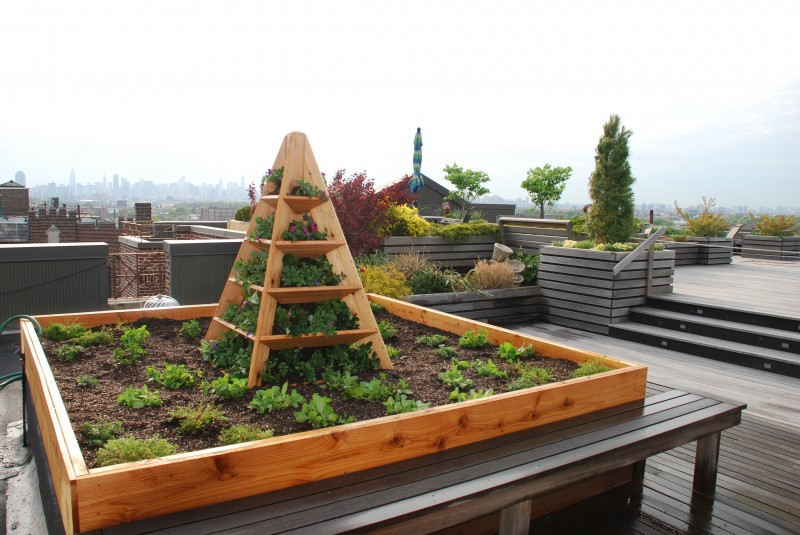 Edible_Gardens_Roof_Gardens_NYC_0145